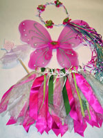 Pink and Green Fairy